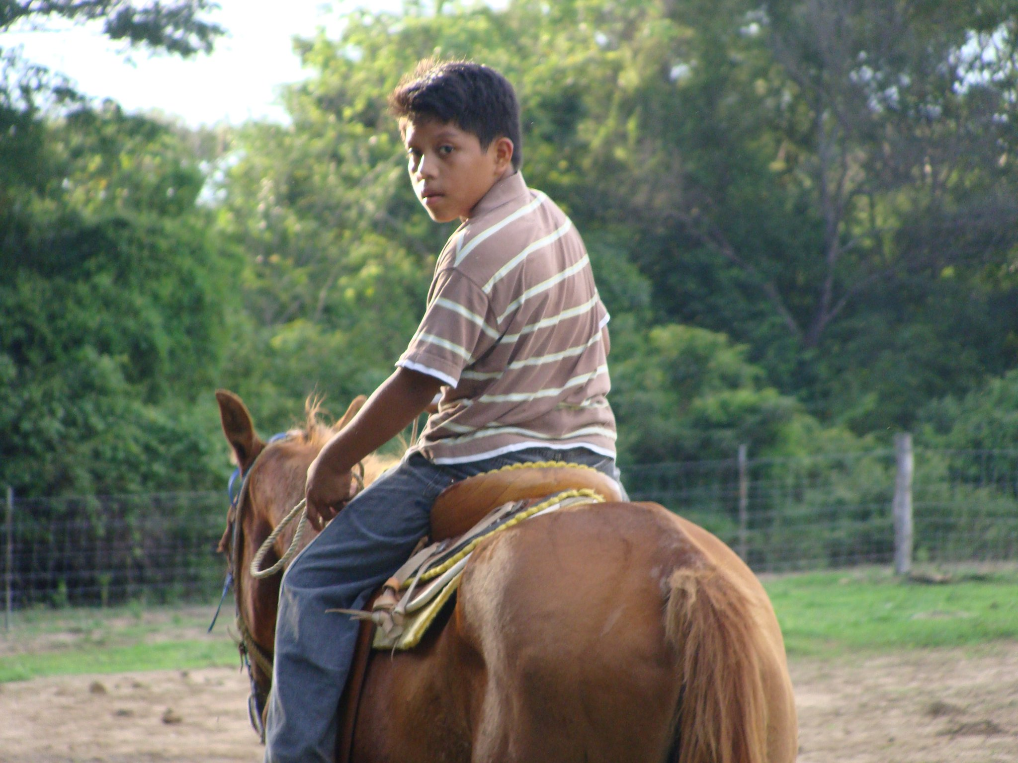 Horseback riding is great therapy for children who have been abused.